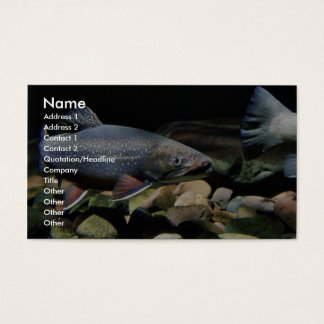 Brook trout business card