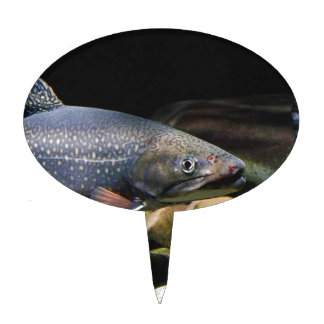 Brook Trout Cake Topper