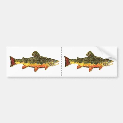 Brook Trout Fish Painting Car Bumper Sticker
