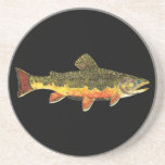 Brook Trout Fish Painting Drink Coaster