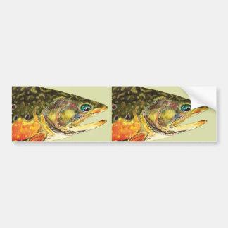 Brook Trout Fisherman Bumper Sticker
