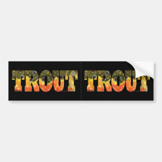 Brook Trout Fishing Bumper Sticker