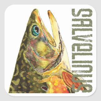Brook Trout Fishing Square Sticker