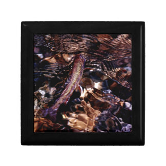 Brook Trout in River Trinket Boxes