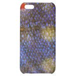 Brook Trout iPhone Case iPhone 5C Case