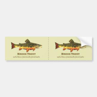 Brook Trout, Latin Bumper Stickers