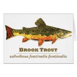 Brook Trout, Latin Card