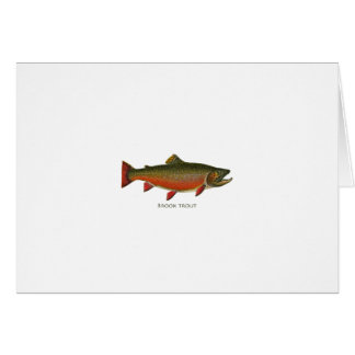 Brook Trout Male (Spawning Phase) Greeting Card
