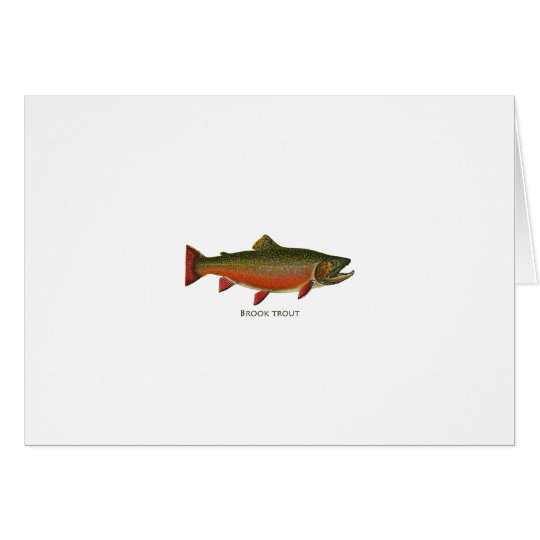 Brook Trout Male (Spawning Phase) Card