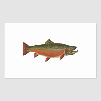 Brook Trout Male (Spawning Phase) Rectangular Sticker
