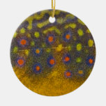 Brook Trout - Mayfly Ornament