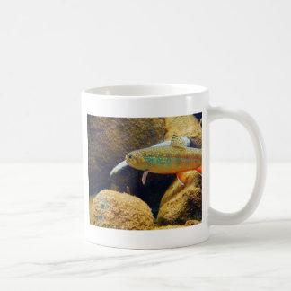 Brook Trout Mugs