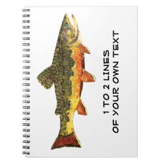 Brook Trout Notebook