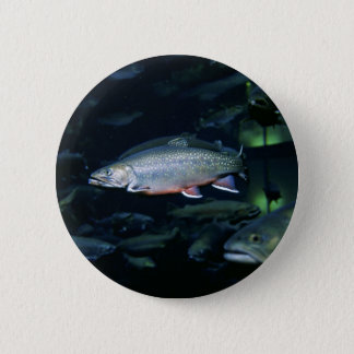 Brook trout pinback button