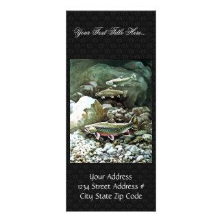 Brook Trout Rack Card