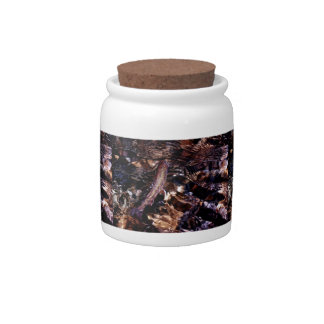Brook Trout Scales Candy Jar