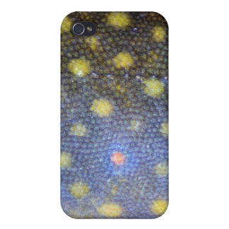 Brook Trout Scales Photography iPhone 4/4S Cases