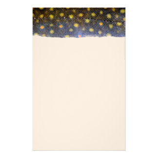 Brook Trout Scales Photography Stationery Paper