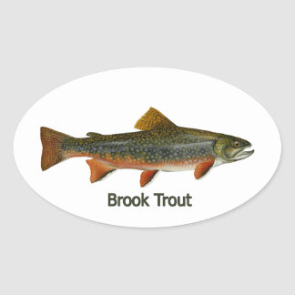 Brook Trout (titled) Oval Sticker