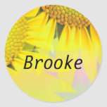 Brooke Stickers