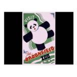 Brookfield Zoo Panda Post Cards