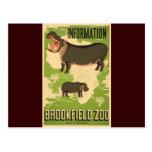 Brookfield Zoo Postcards
