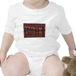 Brooklyn Bridge New York Creeper