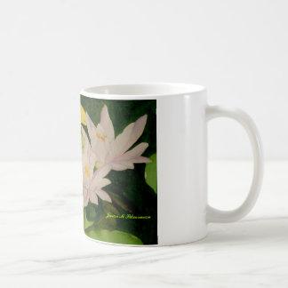 Brooklyn-Lilies, Brooklyn Lilies, Jason M Silve... Classic White Coffee Mug