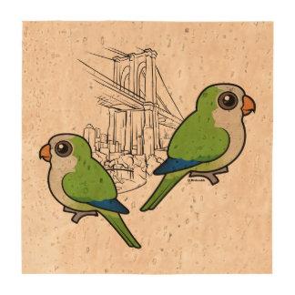 Brooklyn Monk Parakeets Beverage Coasters