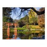 Brooklyn New York Botanic Garden Fall Post Cards