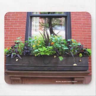 Brooklyn Window Mouse Pad