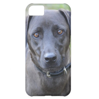 Brooklynn iPhone 5C Case