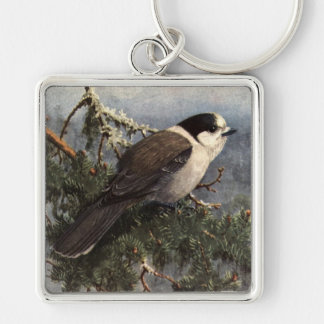 Brooks' Gray Jay in pine Silver-Colored Square Keychain