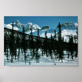 Brooks Range in Winter Poster