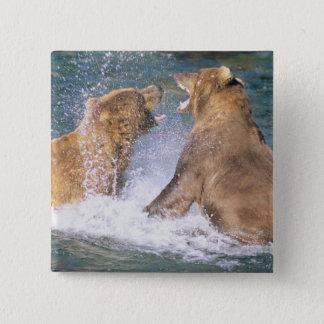 Brooks River, Katmai National Park, Alaska.  Two Pinback Button