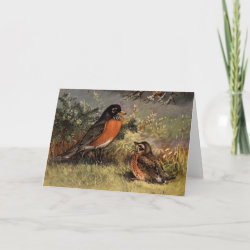 Standard Card with Brooks' American Robins design