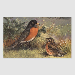 Rectangle Sticker with Brooks' American Robins design