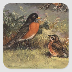 Square Sticker with Brooks' American Robins design