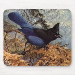 Brooks' Steller's Jay Mousepad