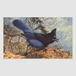 Brooks' Steller's Jay Rectangle Sticker