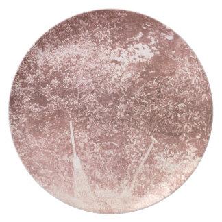 Broom and Spade, 1842 (b/w photo) Melamine Plate