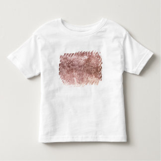 Broom and Spade, 1842 (b/w photo) Toddler T-shirt