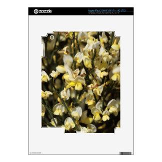 Broom Flowers iPad 3 Skin