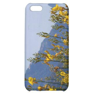 Broom on Cinque Terre coast iPhone 5C Cover