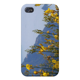 Broom on Cinque Terre coast iPhone 4/4S Cover