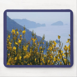 Broom on Cinque Terre coast Mouse Pad