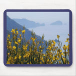 Broom on Cinque Terre coast Mouse Pads