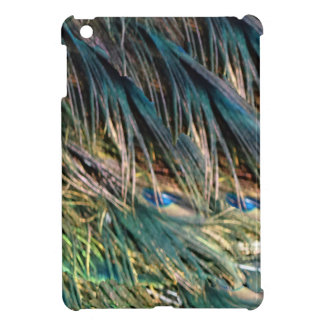 Broom Peacock Feathers Blue Eyes Case For The iPad Mini