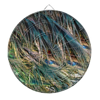 Broom Peacock Feathers Blue Eyes Dartboards