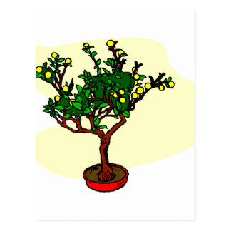 Broom style flowering bonsai graphic postcard